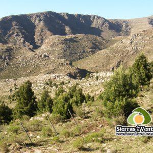 Cerro de la Carpa