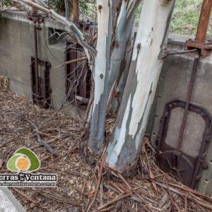 Ruinas de la Planta Clarificadora